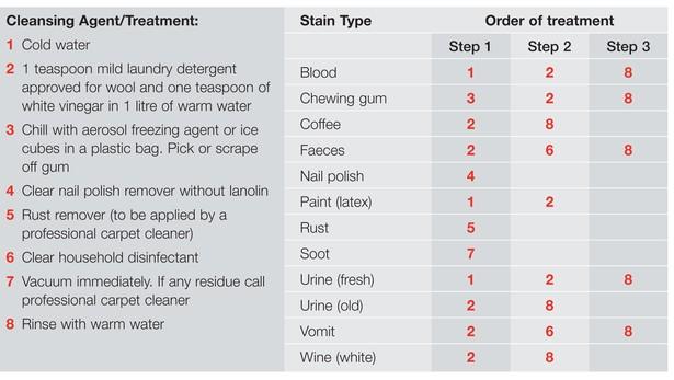 How To Clean Blood Off Wool Carpet Carpet Vidalondon